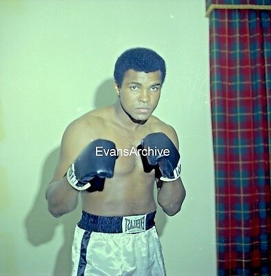 1960s-70s Muhammad Ali Boxing Studio Pose Original 2.25 Negative #6