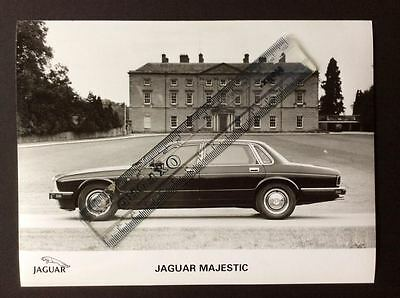 Jaguar Majestic Black And White Press Photograph
