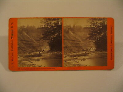 New York Stereoview Photo cdii LE Walker 607 Wolf Creek across Genesee River