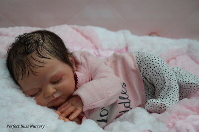 *pbn* Yvonne Etheridge Reborn Baby Doll Girl Sculpt Ylenia By Elisa Marx 0217