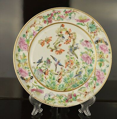 A Beautiful Chinese 19Th Century Famille Rose Plate With Birds