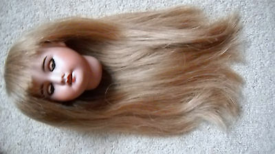 """Antique Dolls All Dolls Beautiful Long French Georgette Bravot Hh Wig 11""""to 12""""h"""
