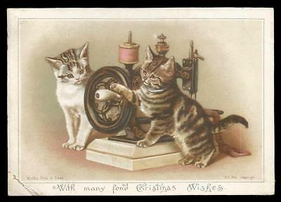 U94 - Cats Playing With A Sewing Machine - Victorian Wirth Bros & Owen Xmas Card
