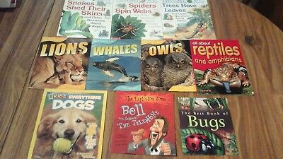 Lot of 10 books: Everything Dogs, All About Reptiles, I Wonder Why, Animal Lives