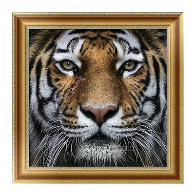 DIY 5D Diamond Embroidery Lion Face Painting Cross Stitch Craft Home Wall Decor*