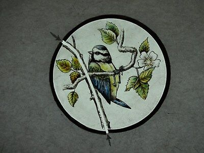 Beautiful Stained glass.BLUE TIT.Hand painted.Kiln fired. Diameter - 120 mm.