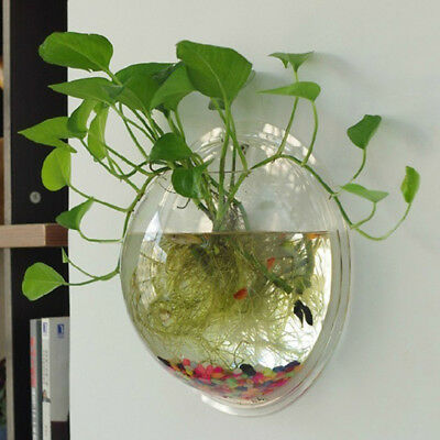 Wall Mount Hanging Fish Tank Aquarium Acrylic Fish Bowl Home Fishbowl Goldfish