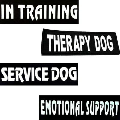 1Pairs Service Dog Therapy In Training Removable Reflective Patches Label Tag