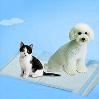 100 Pcs Super Absorbent Disposable Pets Dogs Indoor Toilet Training Pads  YL