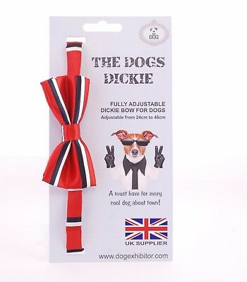 New Dogs Dickie Bow Collar Cute Puppy Cool Pet Adjustable Neck Tie Bandana