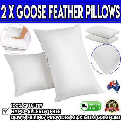 LUXURY Set of 2 Goose Feathers & Down Pillow Bedding Deluxe Hotel