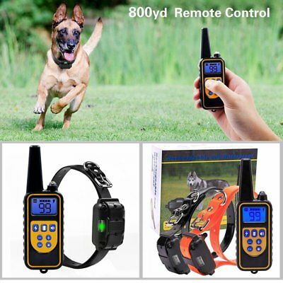 Waterproof Rechargeable LCD 1000 Meters Shock Vibra Remote 2 Dog Training Collar