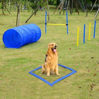 Adjustable Pet AGILITY TRAINING SET Dog Cat Health Well Being Train Equipments