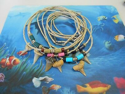 Lot of 6 Fossil Mako Shark Tooth Necklaces  Beachwear Surf Wear