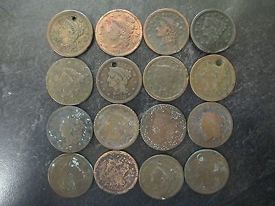 Lot Of 16 United States Large Cents Low Grade Large Penny Lot 1800's