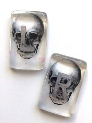 Clear Skull Radiography X-Ray Markers  - choose your own initials