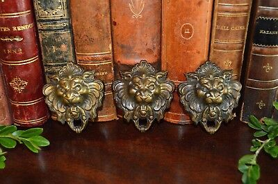 One Antique French Brass Lion Head Decorative Trim Mount 3 Available
