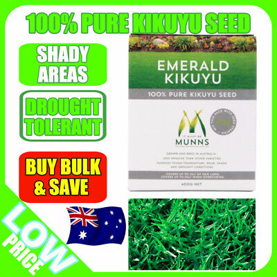 Grass Lawn Seed Munns 100% Emerald Kikuyu Drought Resistant Wear Shade Resistant