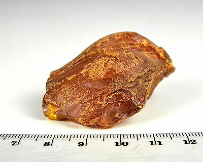 18g Natural Raw Baltic Amber Stone Butterscotch Egg Yolk Yellow Rough Untreated