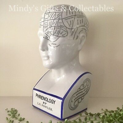 30cm Phrenology Head Medical Bust Scientific Skull Porcelain Ceramic L N Fowler