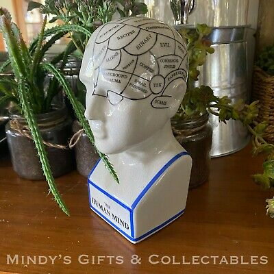 15cm Phrenology Head Medical Bust Scientific Skull Porcelain Ceramic