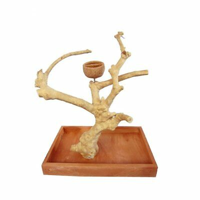 Java wood tabletop trees playstand Small A and E Cage Co. Java Table Top Perch