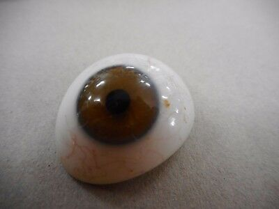 Vintage / Antique Prosthetic Glass Eye ... C