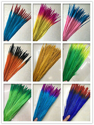 Beautiful  100pcs special color pheasant tail feathers 10-18 inches / 25-45 cm
