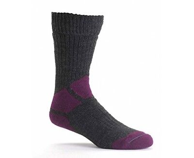 (Dark Purple/Mid Grey, Size 5 - 6) - Berghaus Women's Explorer Sock. Brand New