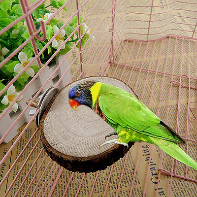 Parrot Pet Bird Round Wooden Hanging Stand Perch Platform Toy Cockatiel  Useful