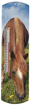 Heritage America by MORCO 375H Horse Outdoor or Indoor Thermometer, 20-Inch