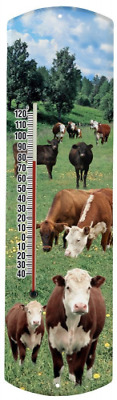 Heritage America by MORCO 375COW-B Beef Cow Outdoor or Indoor Thermometer, 20-In
