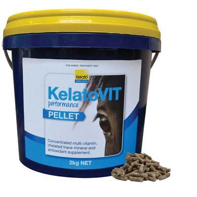 KelatoVIT Performance Pellet 2kg Multi Vitamin Mineral Horse Supplement