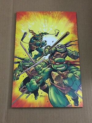 Teenage Mutant Ninja Turtles #75 Kevin Eastman Planet Awesome Variant TMNT