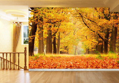 3D Deciduous Forest 74 Wall Paper Murals Wall Print Wall Wallpaper Mural AU Kyra