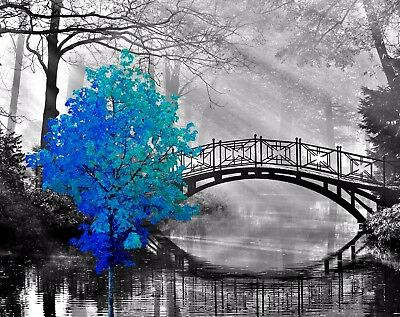 Teal Blue Gray Black Home Decor Photo Art Print Tree B&W Bridge Bedroom Picture