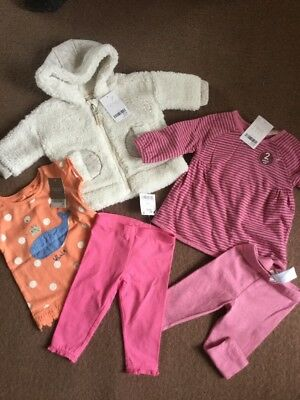 Next Baby Girls Bnwt Clothes Bundle Age 3-6 Months