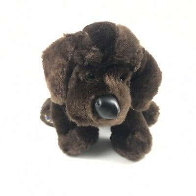 Ganz Webkinz Chocolate Lab Hm138 Brown Dog Plush Stuffed Animal 9