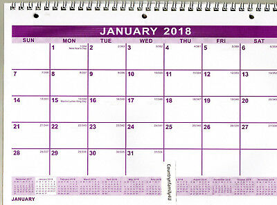 """2018 SPIRAL Wire 3-Hole WALL Hanging MONTHLY Calendar PLANNER 11X8"""" NoteBooks"""