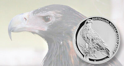 1oz 2016 Australian Wedge-Tailed Eagle Finished in 18k White Gold Coin/Medallion