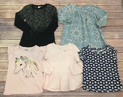 Toddler Girls Lot of 5 -Dresses and Shirts Size 3T-EUC