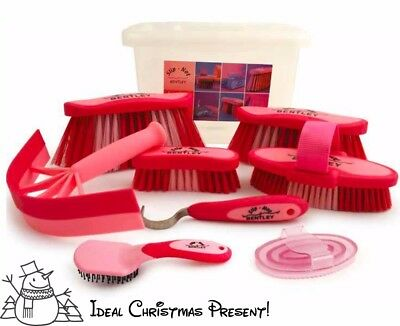 Bentley Slip-Not Equestrian Grooming Kit with box in PINK