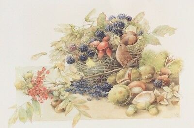 Marjolein Bastin Frameable 11x14 Prints Natures Sketchbook 1994 Berry Berries