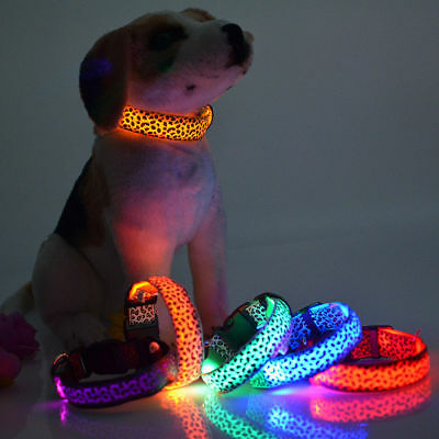 Rechargable Adjustable LED Light Flashing Glow Luminous Pet Dog Safety Collar AU