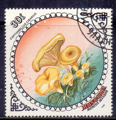 Mongolia STAMP Cantharellus Cibarius Theme  Mushrooms 1985.