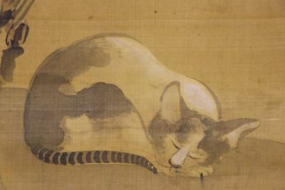"""JAPANESE HANGING SCROLL ART Painting """"Cat and Flower"""" Asian antique  #E8346"""