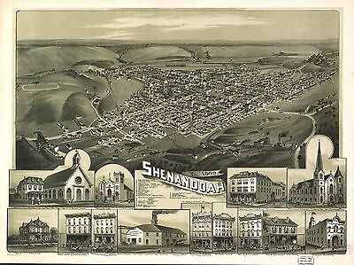 12x18 inch Reprint of American Cities Towns States Map Shenandoah Pennsylvania