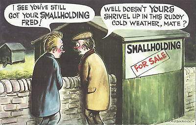 Vintage 1970's Bamforth COMIC Postcard (as new condition) smallholding FRED #285