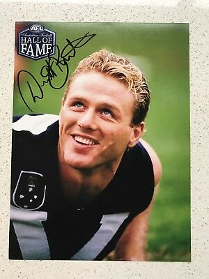 Afl Hall Of Fame - Dermott Brereton - Hawthorn - Signed Photo