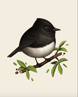 Mike Mitchell Black Phoebe Fat Bird Ap/artist Proof Giclee Print Signed Sold Out